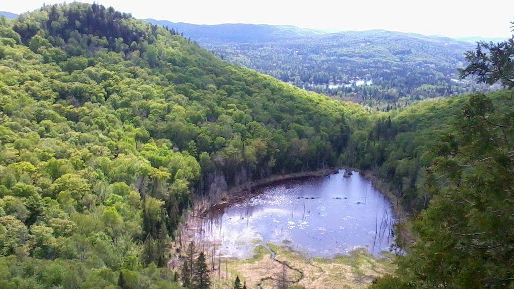 Photo: ParcrégionaldeVal-David-Val-Morin