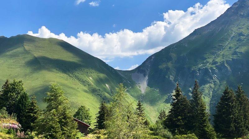Les montagnes alpines près de Vallorcine