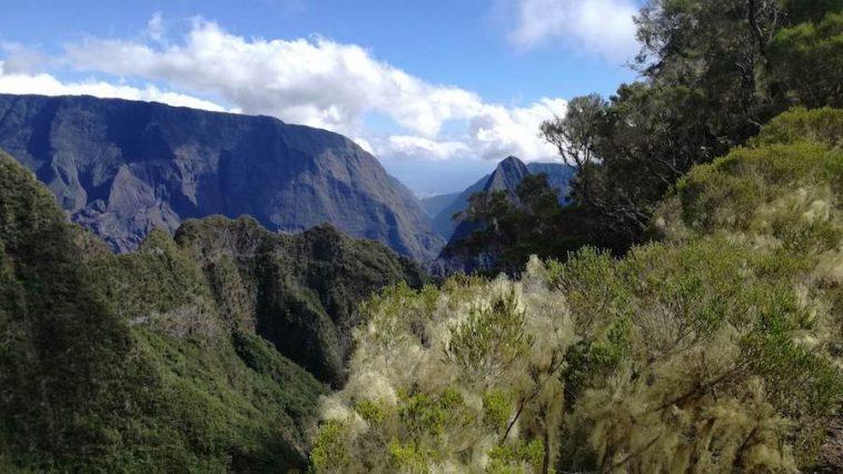 Vue sur le sentier scout sur le parcours du Mafate Trail Tour