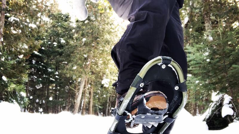 raquette d'hiver