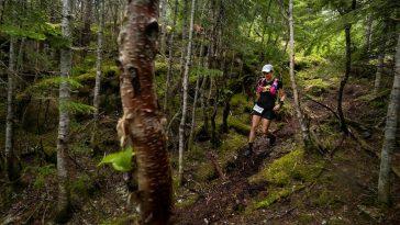 coureuse dans le bois