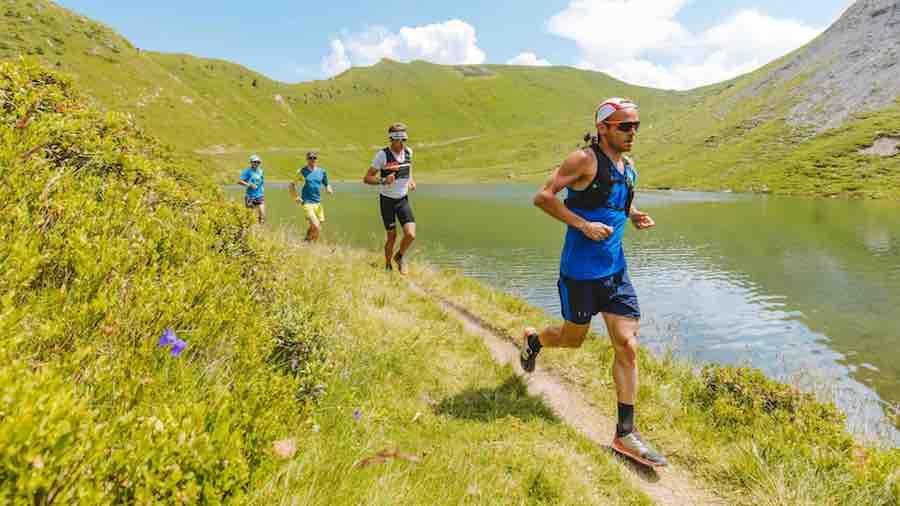 Ourea trail